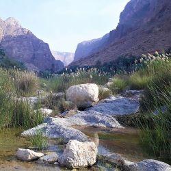 Mountains, Wadis and Sea 7 Night Oman Adventure