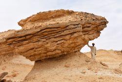 Rocks and Fossils Oman 2n